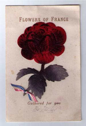 card-flowers-of-france_600.jpg