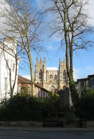 Trees in foreground, missing lower branches, cathedral and other buildings behind