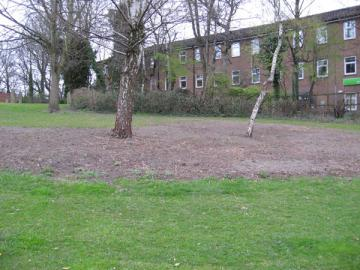 Grass, couple of trees, bare soil