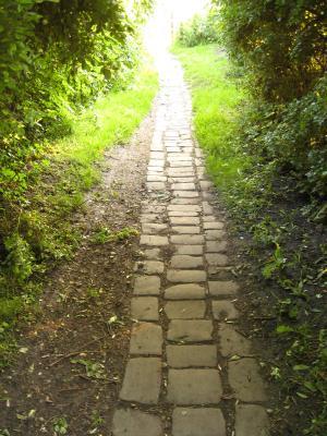 scarcroft-allotments-path-25june2012-600.jpg