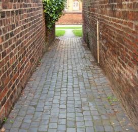 shaws-terrace-alley-1-250612-545.jpg