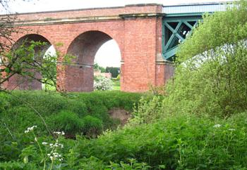 Brick arched viaduct seen across riverside greenery