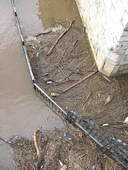 Twigs, bottles, cans etc caught in brown floodwater
