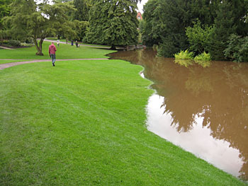 Park grass covered in brown flood water