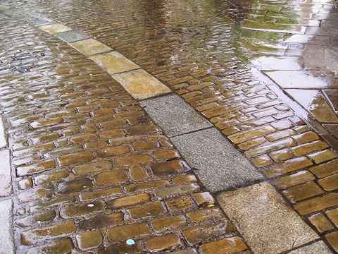 Traditional paving materials shining on a rainy evening