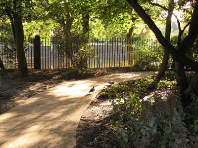 museum-gardens-071012-400.jpg