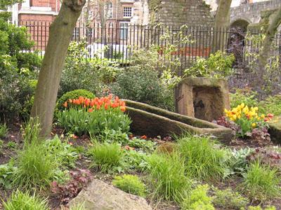 museum-gardens-270412-400.jpg