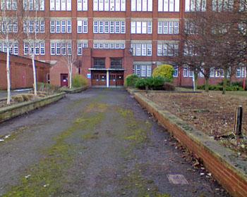 Winter garden, pruned, tidied