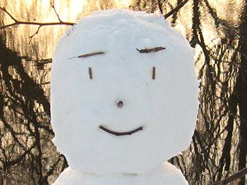 snowman_face_ouse-side_050212_350263.jpg
