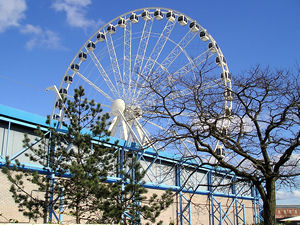 Big wheel – with trees