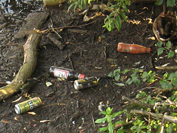River Foss wildlife and litter sanctuary