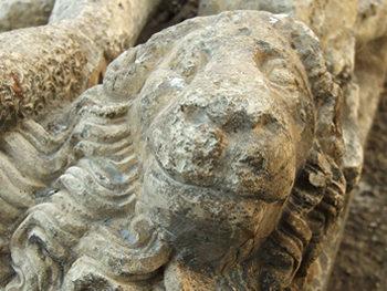 Carved lion – detail