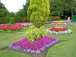 Bedding plants display, Homestead Park