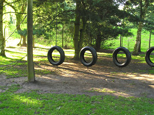 Tyre swings