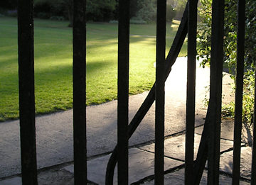 Museum Gardens, through railings, first light
