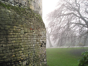Multangular Tower and trees in fog