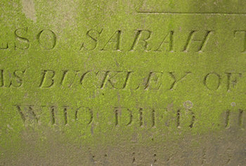 Memorial inscription to Sarah Buckley – detail