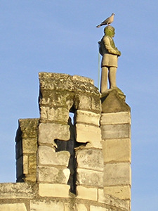 Collared dove perched on stone figure – Micklegate Bar