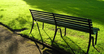 Bench in Homestead Park, in late afternoon sun, 1 September 2006