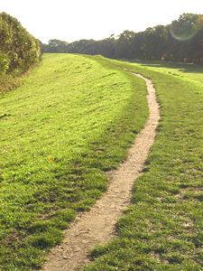 Rawcliffe Meadows
