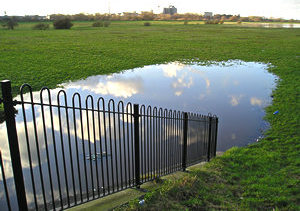 Sky reflected in a large pool of water, Clifton Ings