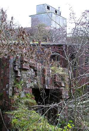 Bricks, vegetation, works silo
