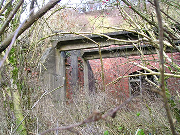Remaining structures overgrown by vegetation