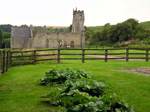 View of St Martin's, Wharram Percy