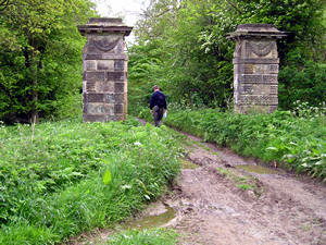 Stone pillars, near Welburn