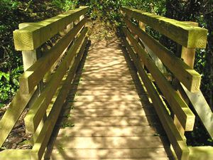 Handsome wooden bridge