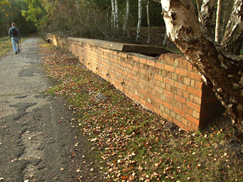 Brick wall and fallen leaves, Skipwith Common, October 2007